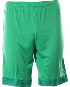Къси панталони и бермуди PUMA